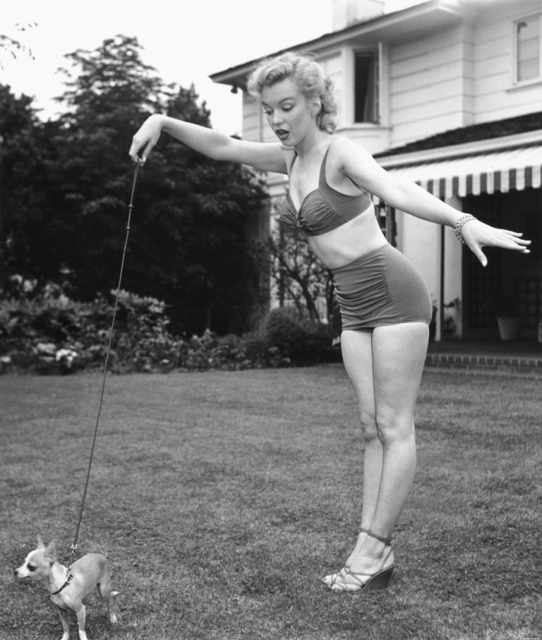 Marilyn Monroe in a high-waisted panty